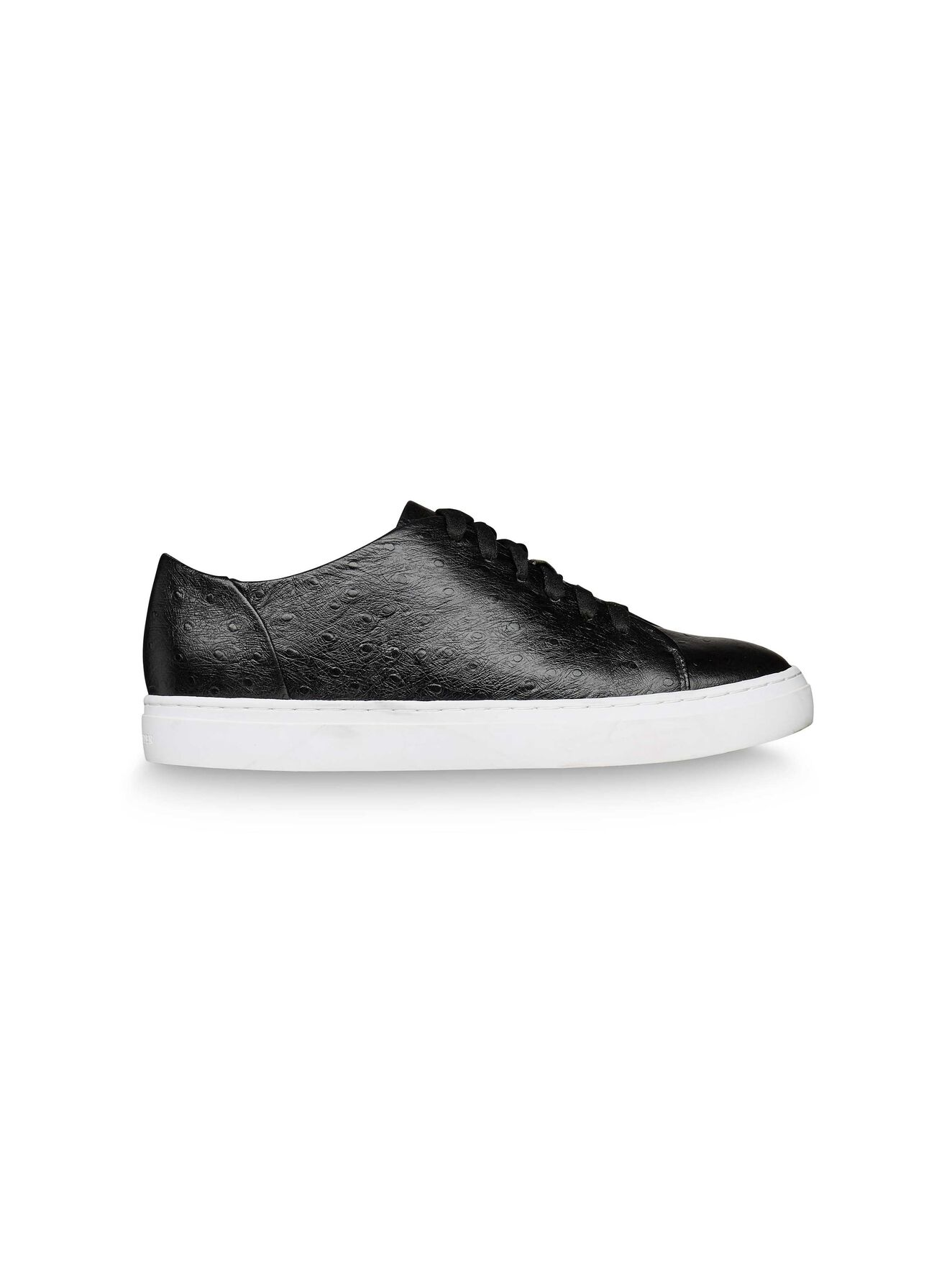 Crewe Sneaker in Black from Tiger of Sweden